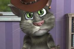 Gato Falante