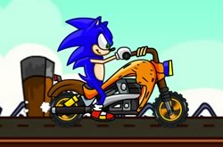 Sonic Friendly Race