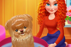Merida Pet Care Salon