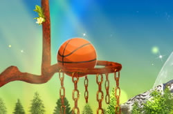 Nature Basketball