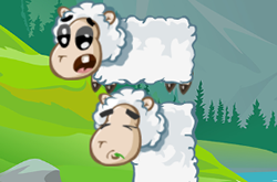 Sheep Stacking