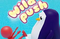 Wild Push