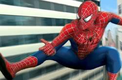 Spider Man Web of Words