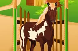 Jogo de Cuidar de Cavalos
