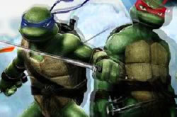 Ninja Turtle Double Dragon
