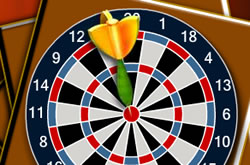 Dart 501 Challenge
