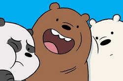 Memória Ursos Sem Curso