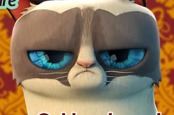 Grumpy Cat Dental Care