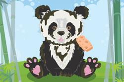 My Pretty Panda Care