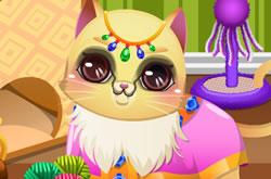Kitty House Maker