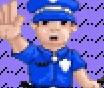 Super Cops