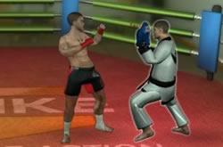 Training MMA