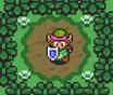 Zelda Link Backyard