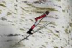 Pular de Ski