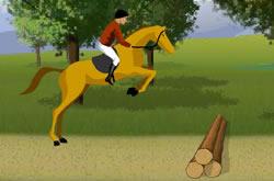 Campeonato de Cavalos